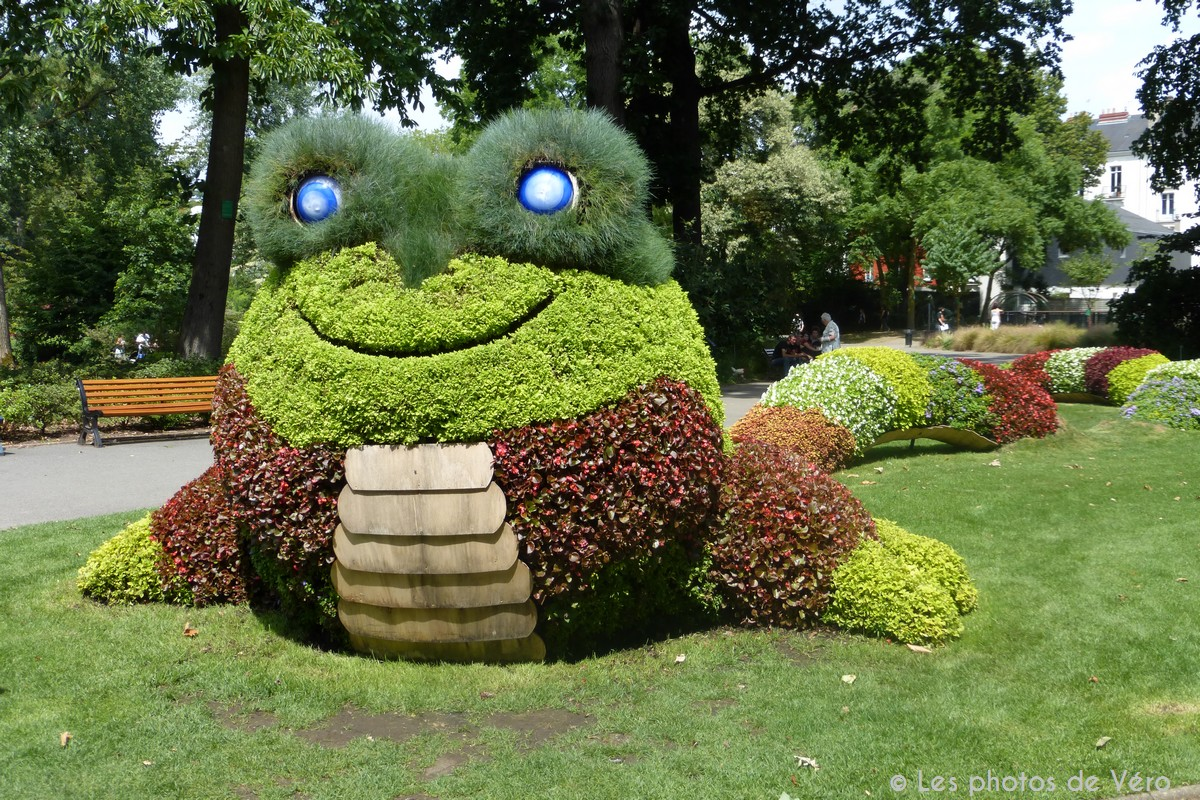 Awesome nantes jardin des plantes fleur pictures awesome for Plante et jardins
